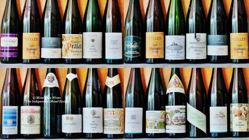 2009 dry Riesling | 2009 Off-Dry Riesling | Progress Report | Label