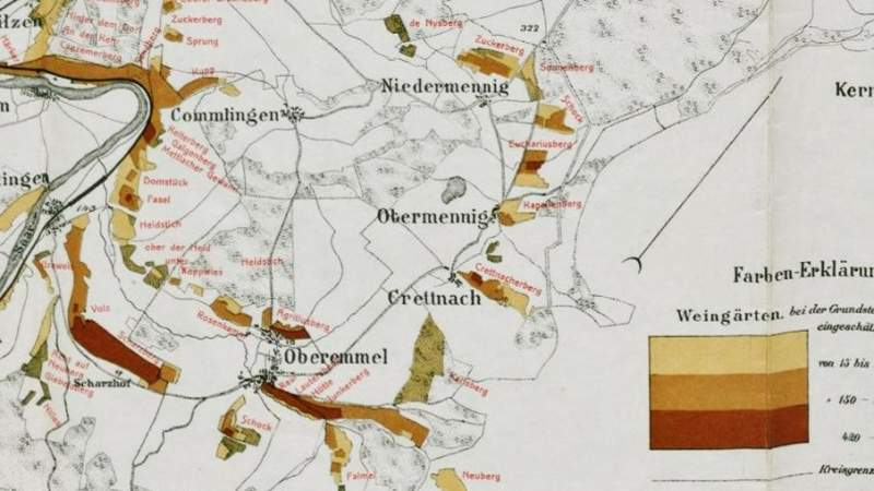 Vineyard Map | Prussian | Klotten | Picture | Bild