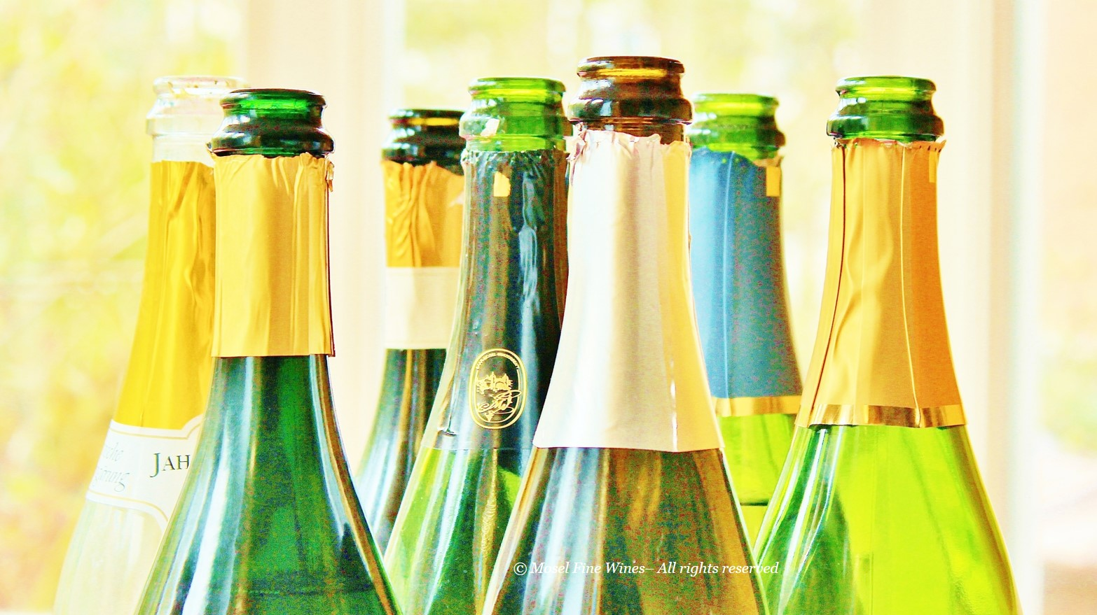 German Sekt | Picture Bottles
