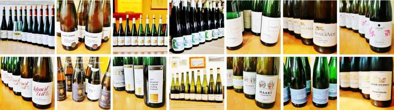 2017 Vintage Report | Mosel | Riesling | Wine | Picture