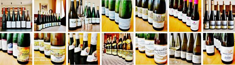 2018 Vintage Report | Mosel | Riesling | Wine | Picture
